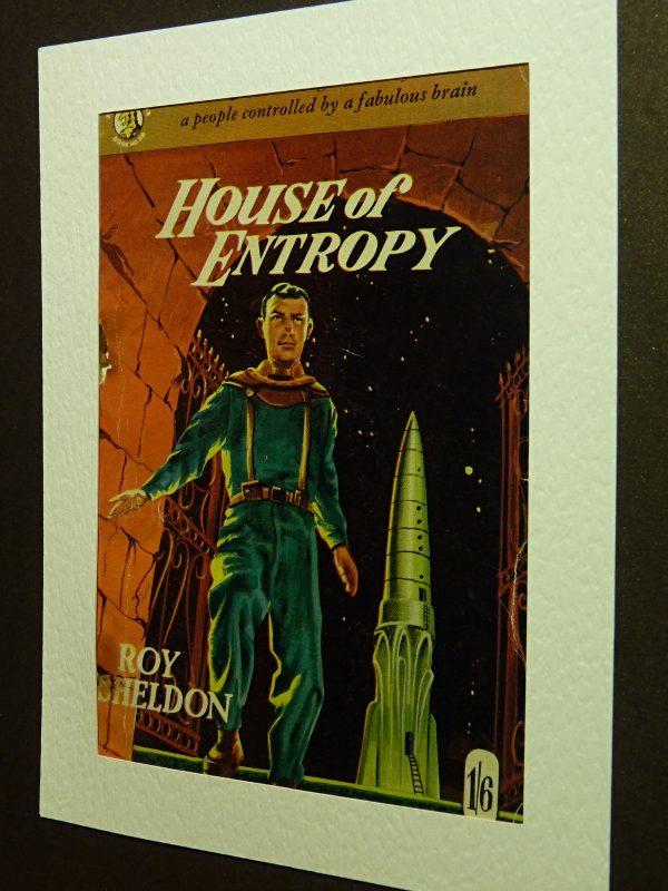 House of Entropy by Roy Sheldon